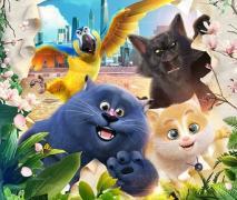 Кошачий рай (2018) смотреть онлайн